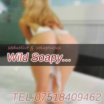wild wet soapy massage